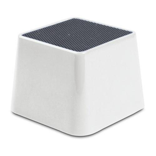 cassa wireless portatile
